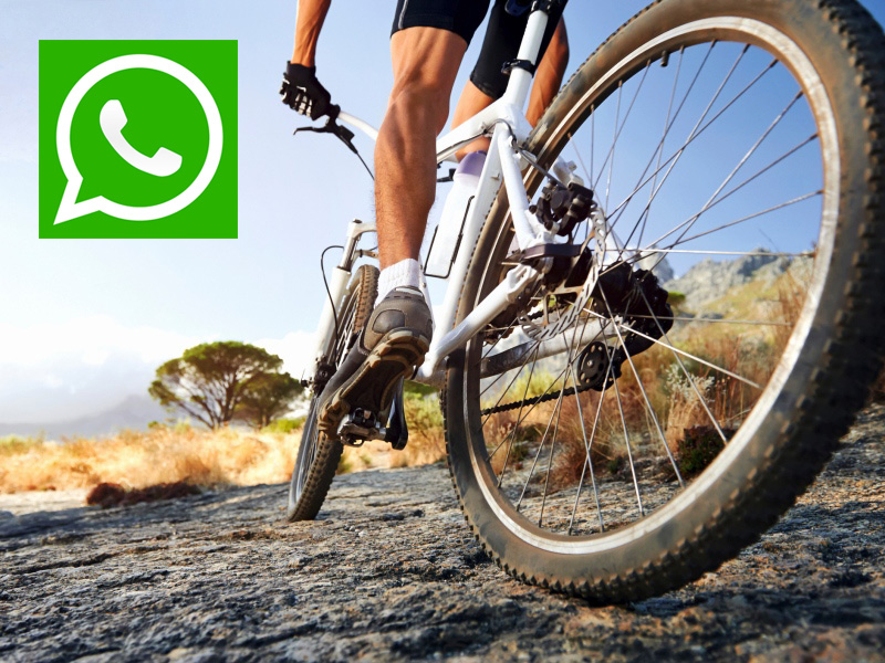whatsapp mtb